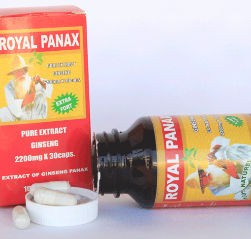 Royal_Panax_4b994435b22bc-510x485